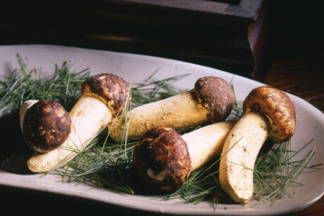 seasonalmushrooms