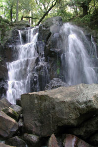 Linda Falls now has an extra layer of protection thanks to a partnership between Land Trust of Napa County and the Napa County Regional Parks and Open Space District.