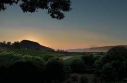Acumen Napa Valley