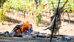 Vineyard Open Fire Cooking