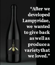 lampry vineyard