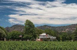 corely vineyards