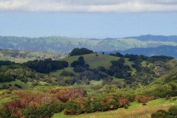 wild horse valley ava